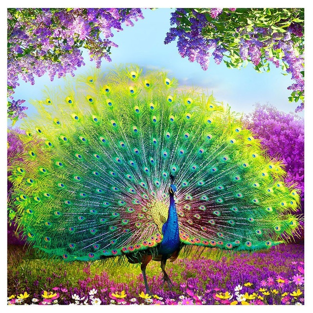 Peacock DIY Diamond Painting Cross Stitch Round Diamonds Embroidery Mosaic Home Decor