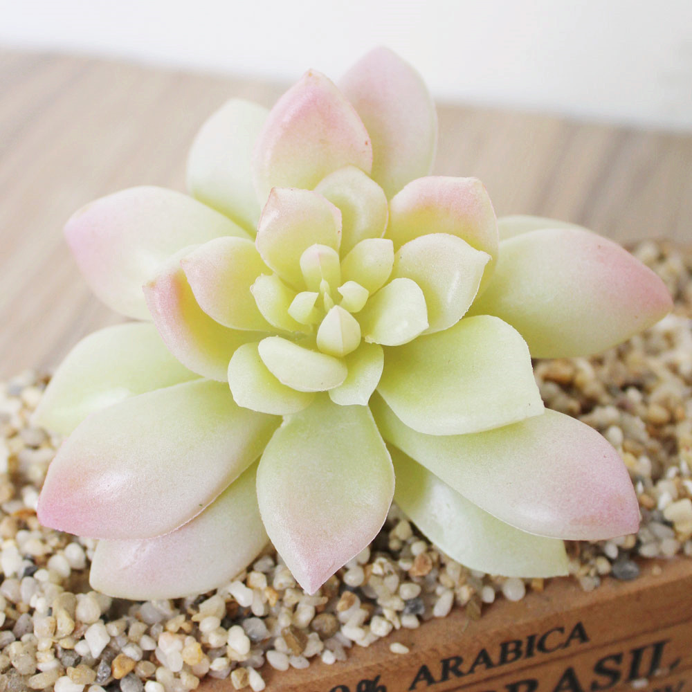 Artificial Simulation Lotus Flower Succulent Grass Desert Plants ...