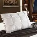 Sugan Leven 48*74 cm Brand Design 3D Brood Witte Eend/Ganzendons Veren Kussen Standaard Antibacteriële Elegante thuis Textiel 014