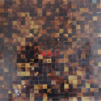 Hot Sale Sea Shell Mosaic Tiles Mother Of Pearl Indoor Wall Mosaics Tile Natural Black Brown