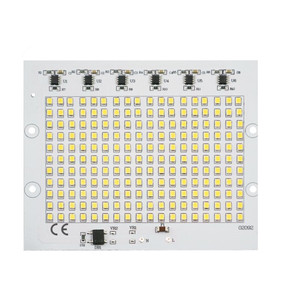 Smart IC 2835SMD LED Chips Lamp 10W 20W 30W 50W 100W AC 220V-240V DIY For Outdoor Floodlight Garden Cold White Warm White(China)