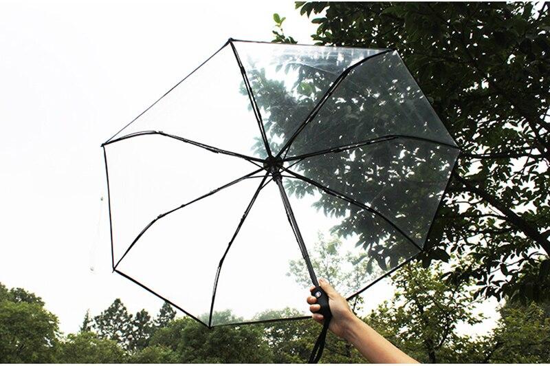 parapluie transparent1 (11)