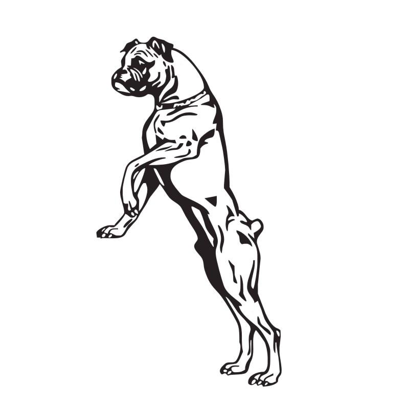 Stor Storlek Boxer Hund Väggdekaler Vinyl Klistermärken - Heminredning - Foto 3