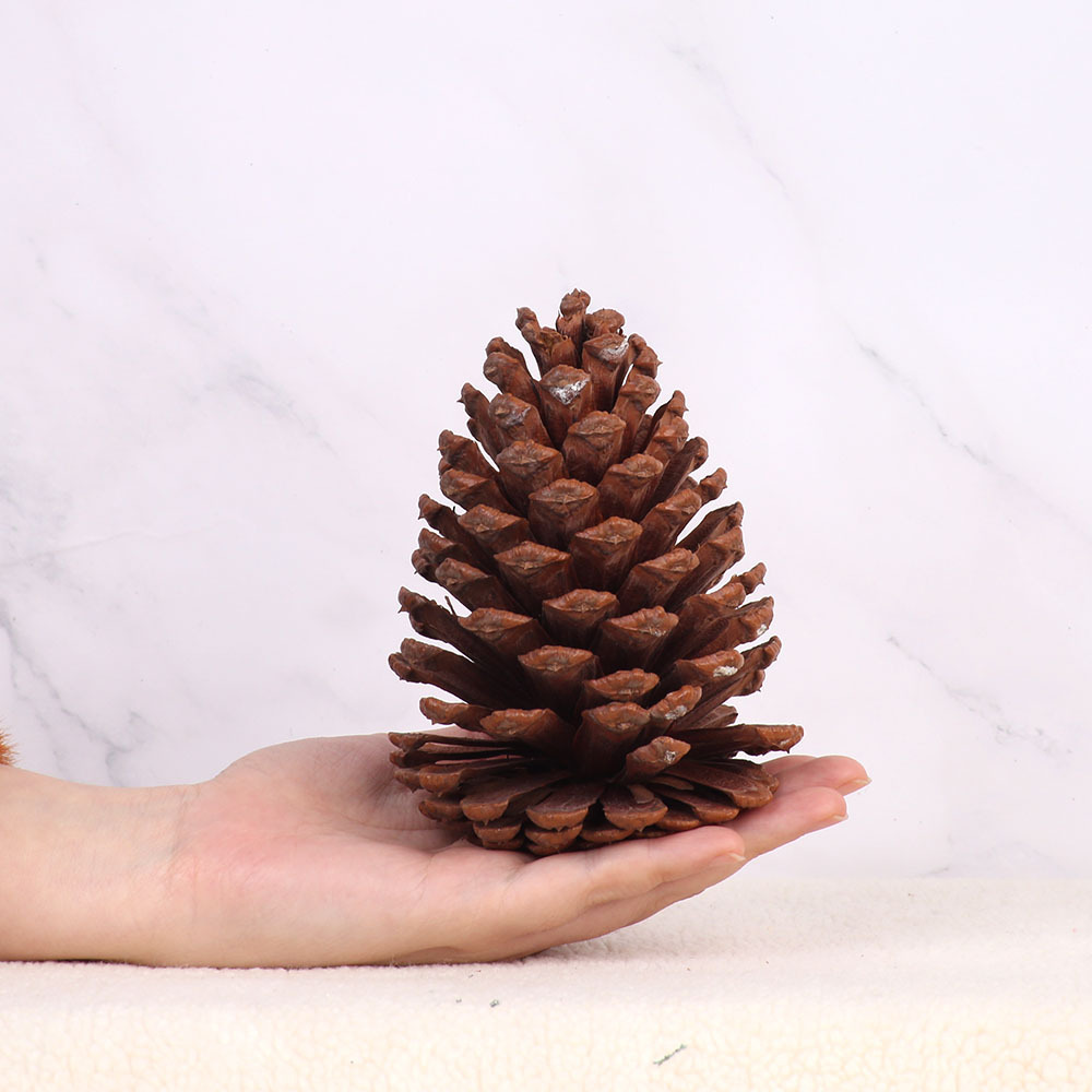 1pc Christmas Decoration Large Natural Pine Cones Pinecone Xmas New Year Holiday Party Decoration Ornament For Home Supplies