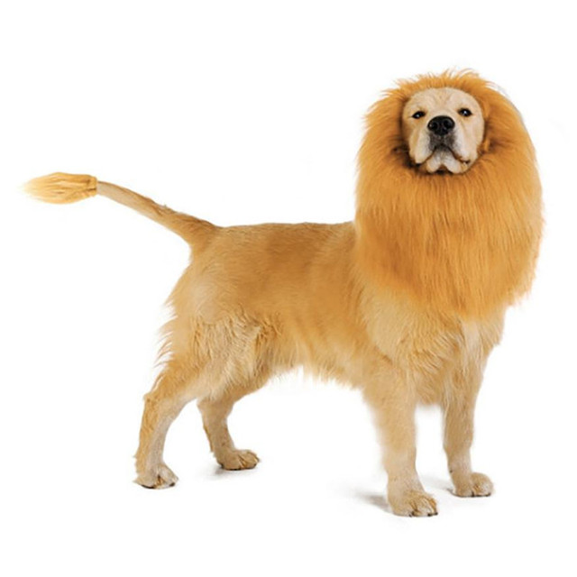 Lion Mane for Dog Costume With Gift Lion Tail Lion Wig for Dog X10113 002447c3a