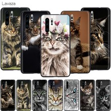 Lavaza Pet Maine Coon Gatto di Caso per Huawei Mate 30 20 Honor 6a 7a 7c 7x 8C 8x9 10 Nova 3i 3 Lite Pro Y6 2018(China)