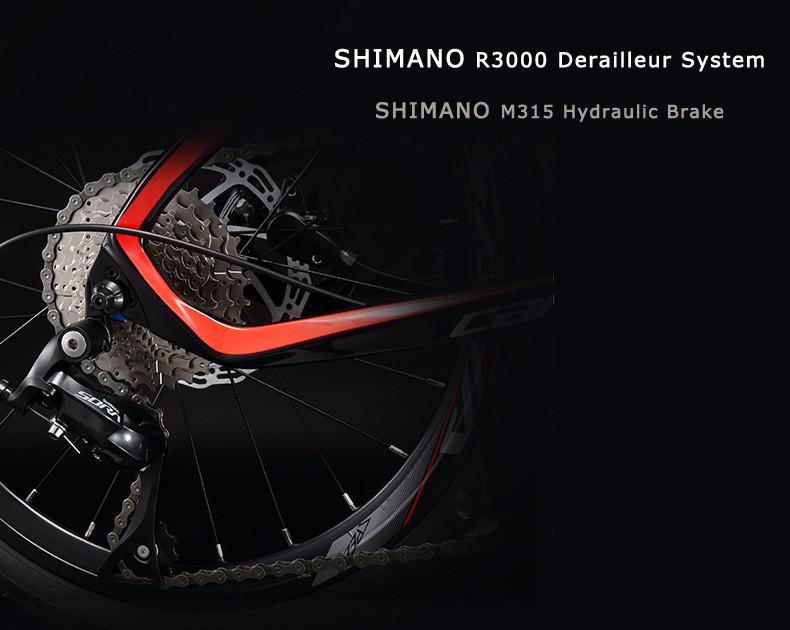 Folding bike -X-11