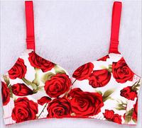 QA39 Push Up Bra Soft Cotton Sexy Women S Underwear Luxury Embroidery Female Breathable Brassiere Set