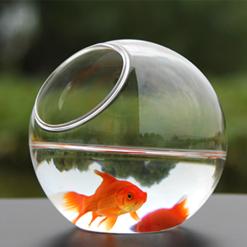 Diamètre = 8 cm 10 cm 12 cm 15 cm 20 cm grand emballage verre Transparent Aquarium fait main Table Fishbowl verre Terrarium cadeau