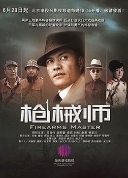 《枪械师》2012年中国大陆战争电视剧在线观看