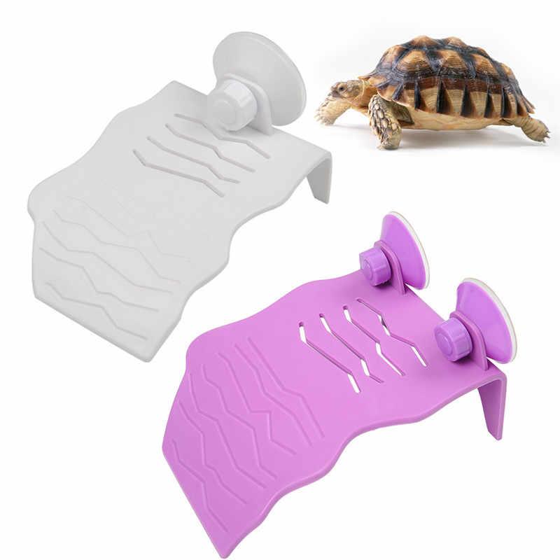 Dubbele Sucker Terras voor Kleine Huisdieren Slakken Hagedissen Turtles Slangen Huis Decor Siliconen Terras voor Slapen Rest