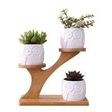 3Pcs Owl Succulent Flower Pots with 3 Tier Bamboo Stand Holder Ceramic Flower Plant Pot Home Office Desk Garden Decoration