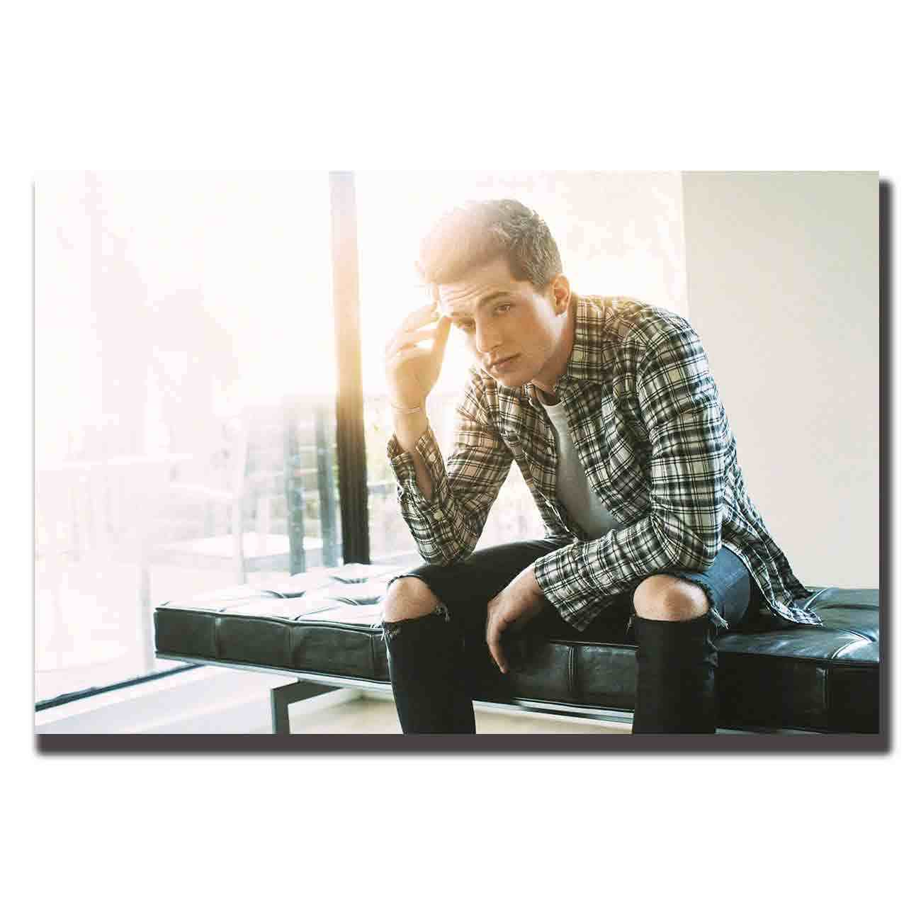 Art Posters Wall Canvas  room Decor 24x36 27x40 20x30 Charlie Puth / Music Singer Star painting pictures