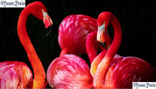 MOONCRESIN 3D Diy Diamond Mosaic Flamingo Family Play Painting Cross Stitch Full Square 5D Embroidery Decoration