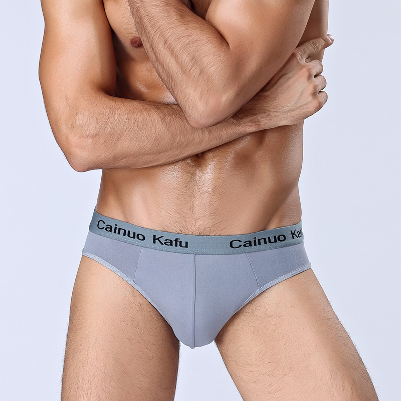Bamboo Mens Underwear Sexy Briefs Men Silk Panties Penis Pouch Breathable Underpants Cool Push Up Lingerie Plus Size 3XL 4XL 5XL