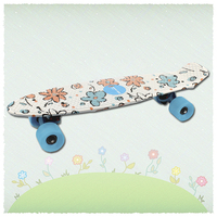 Fish Board Skateboard Peny Board Mint 22 Pnny Style Skateboard Complete Plastic Mini Longboard Mini Cruiser
