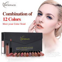 NICEFACE 12pcs Set Liquid Matte Lipstick Long Lasting Elegant Nude Colors Lip Gloss Combination Set Waterproof