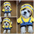 Funny Pet Cat Costume Dog Clothes for Small Dog Spring Tshirt Puppy Hoodie Coat Jacket Minions Pajama Outfit Chihuahua Clothes35