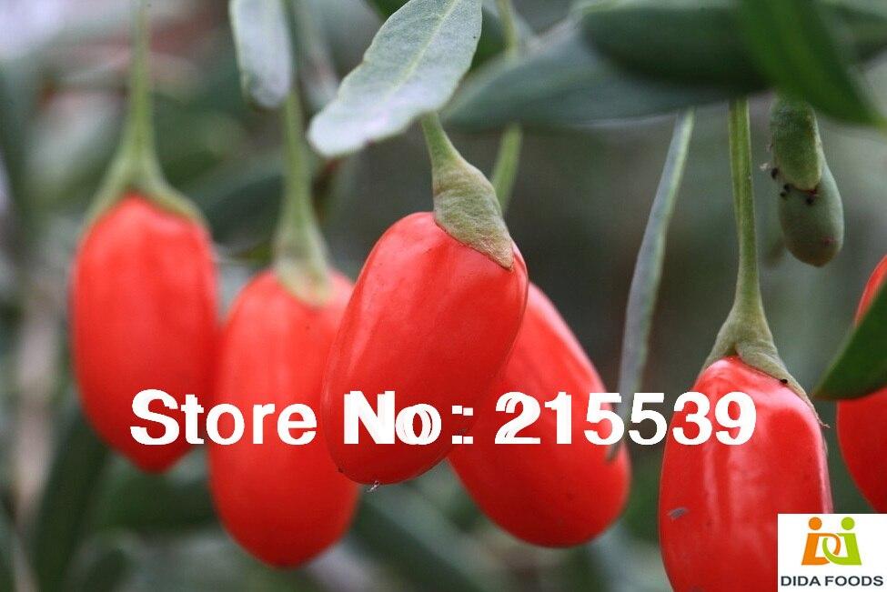 ягоды годжи купить на алиэкспресс