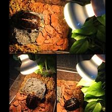 Pet Heating Lamp UVA Day Night Amphibian Amphibian Snake Lamp Heat Reptile Bulb Light 25W 50W 100W AC220-240V Dropshipping