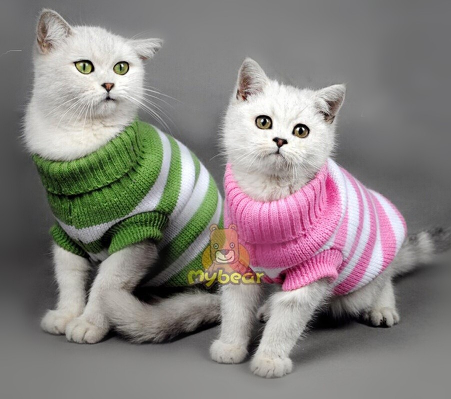 NEW Candy Stripe Color Warm Cat Sweater Pet Jumper Cat Clothes For Small Cat Pets domestic long-haired cat