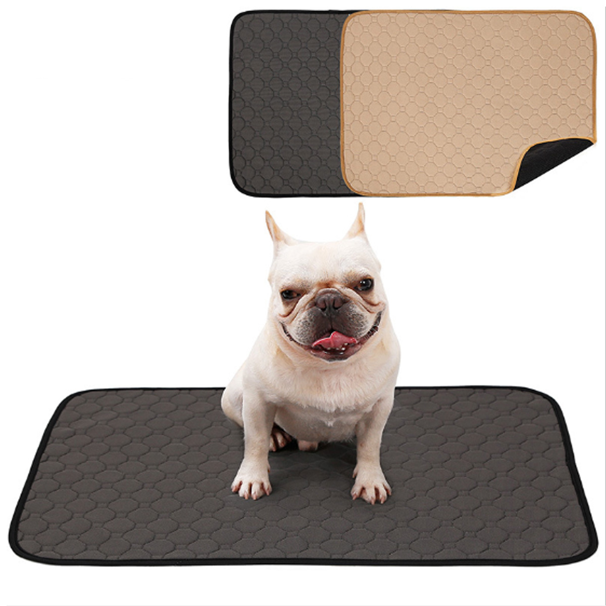 Antibacterial and Super Absorbent Puppy Training Pad for Potty and Pee Training for Dogs 5