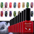 12PCS/SET Magnetic Cat Eye Gel Nail Gel Polish Long-lasting  Soak-off LED UV  Color Gel Varnish 10ML/PCS-SNK12
