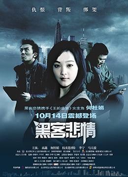 《黑客悲情》2011年中国大陆,韩国剧情,犯罪,悬疑电影在线观看