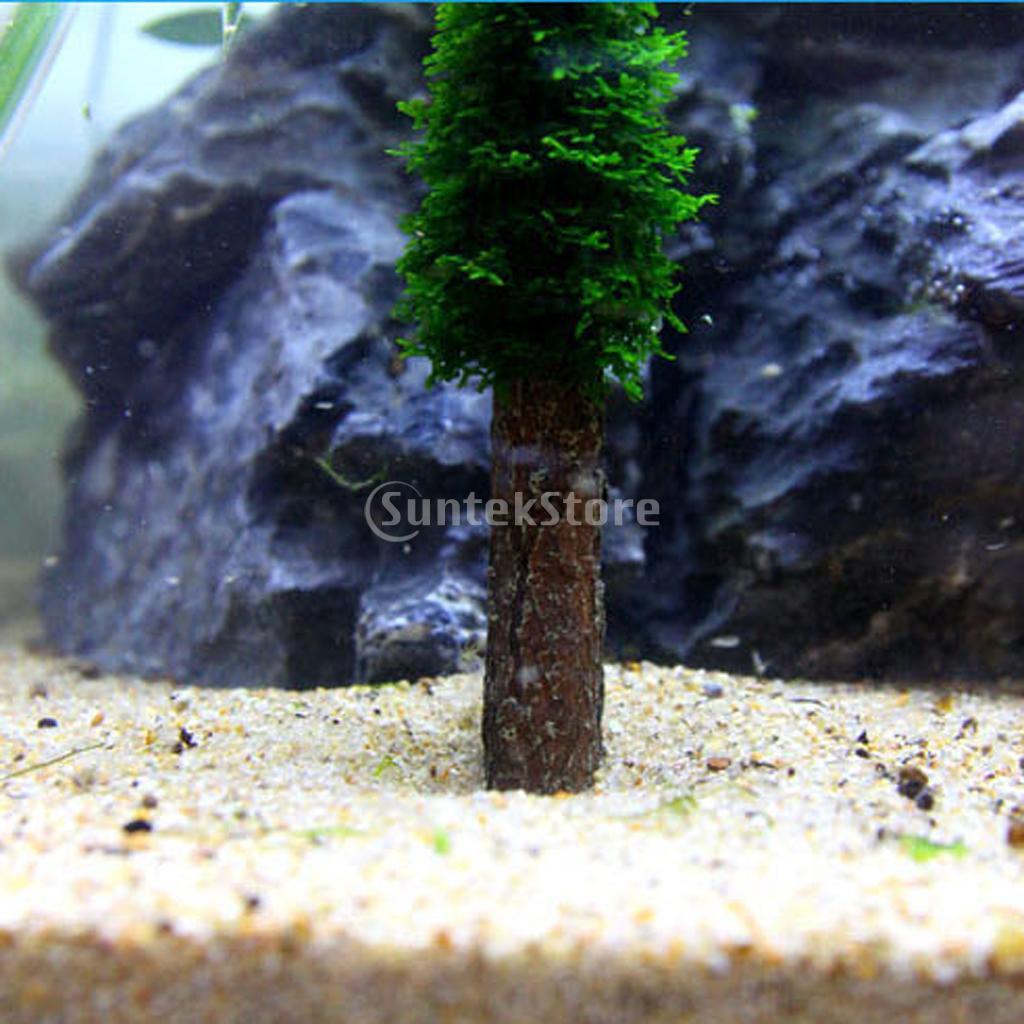 яванский мох для аквариума купить