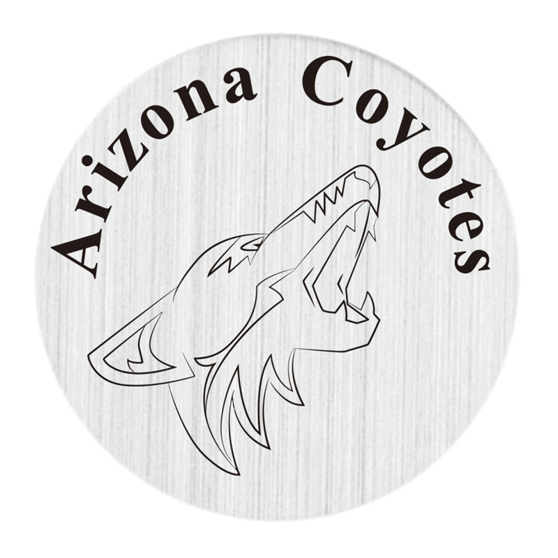 Arizona Coyotes NHL Team 22MM Stainless Steel Charm Plate Hockey Floating Window Plate Fit Glass Locket 5PCS