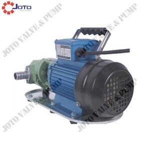Image 4 - High Efficiency Gear Mini Oil Pump Cast Iron 750w 220V/50HZ