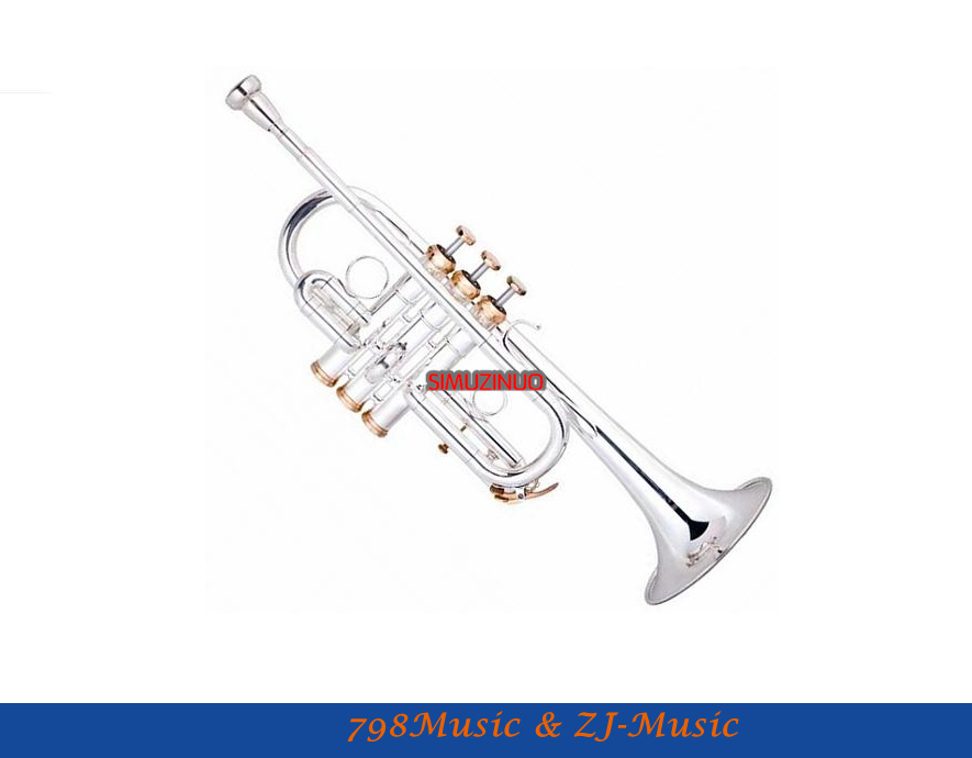 Eb/D Key Trumpet Professional Model With Case-Bore Size 11.6mm-Bell DIA.120mm