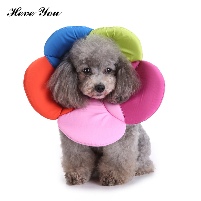 Heve You Pet Collar Perro For Dog Inflatable Collar For Soft Recovery Dogs Collar Dog Neck Wound Healing PreventPuppy Lick Wound