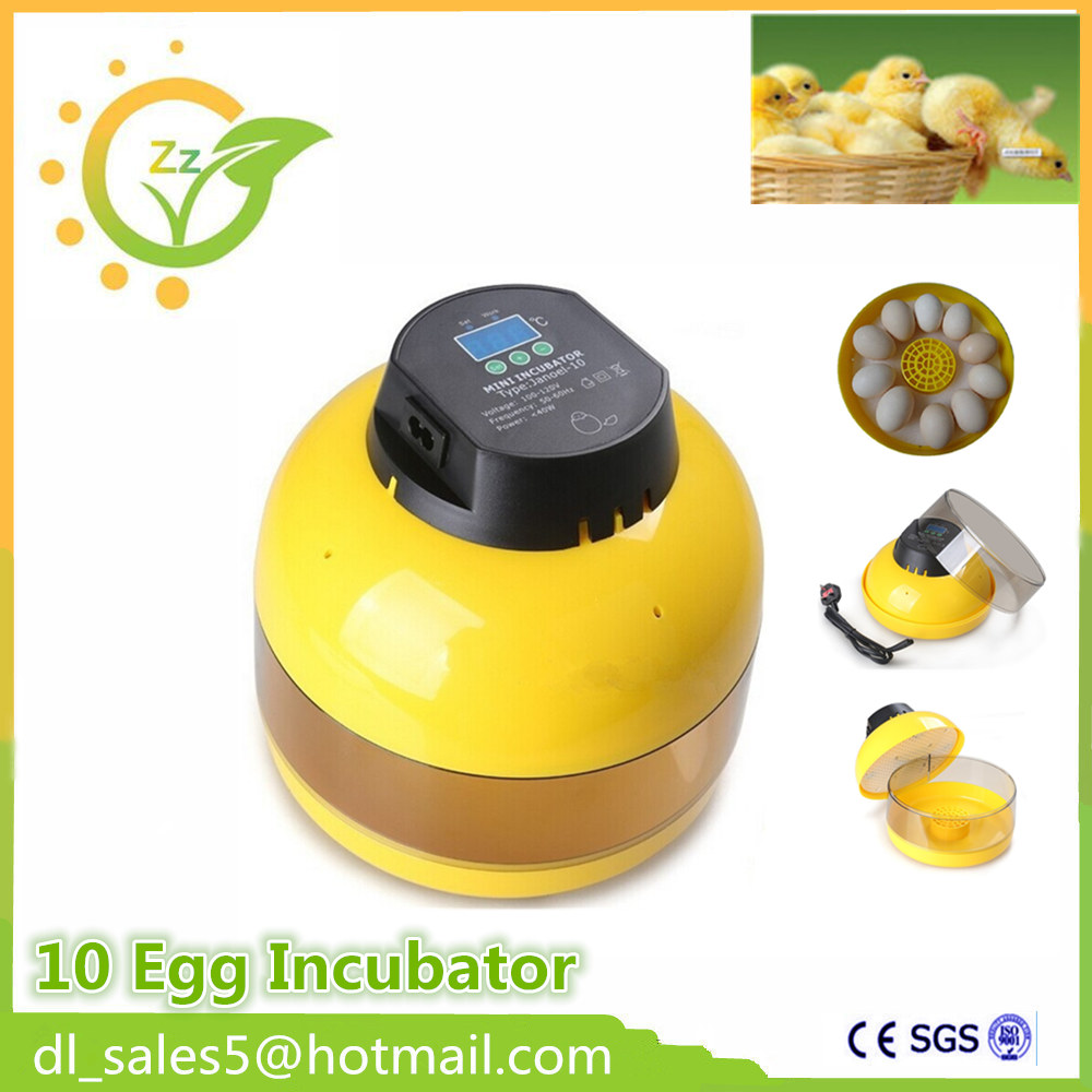 ФОТО Automatic Temperature Control  Eggs Incubator Hatcher Transparent 10 Eggs Hatching Machine for Chicken Duck Bird Eggs