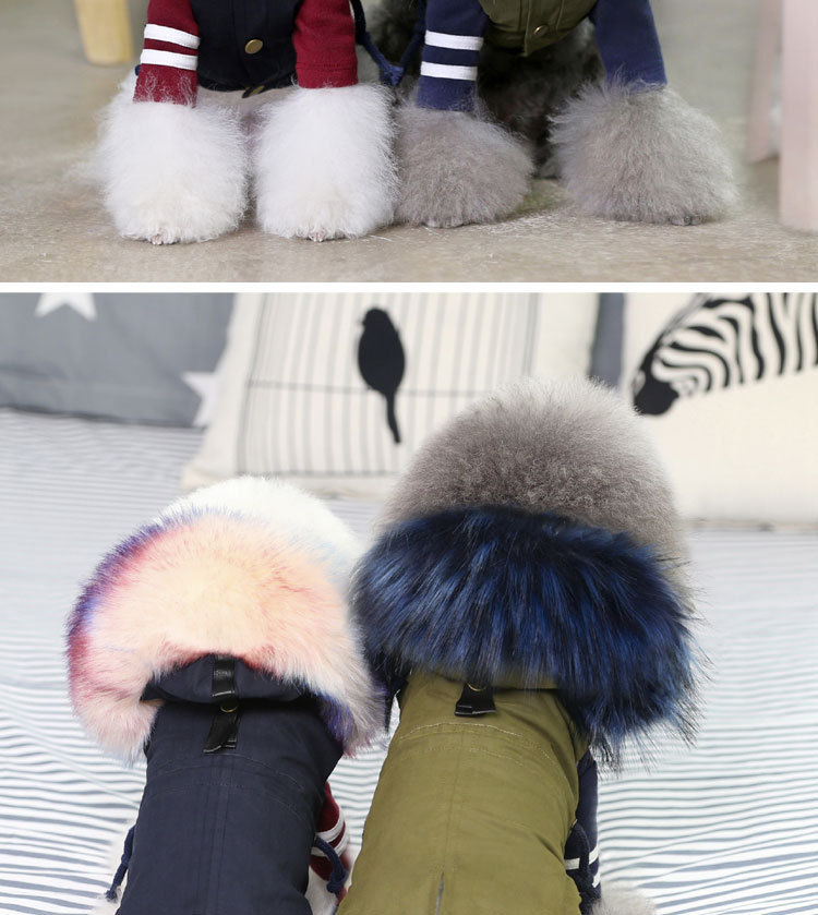 Luxury Dog Clothes (2)