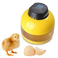 Mini 10 Egg Incubator Automatic Controller For Chicken Duck Goose Poultry
