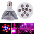 Rayway E27 Full spectrum Led Grow Light Lamp For Plants Vegetables Hydroponic System Grow/Bloom AC 85-265V Free drop Shipping