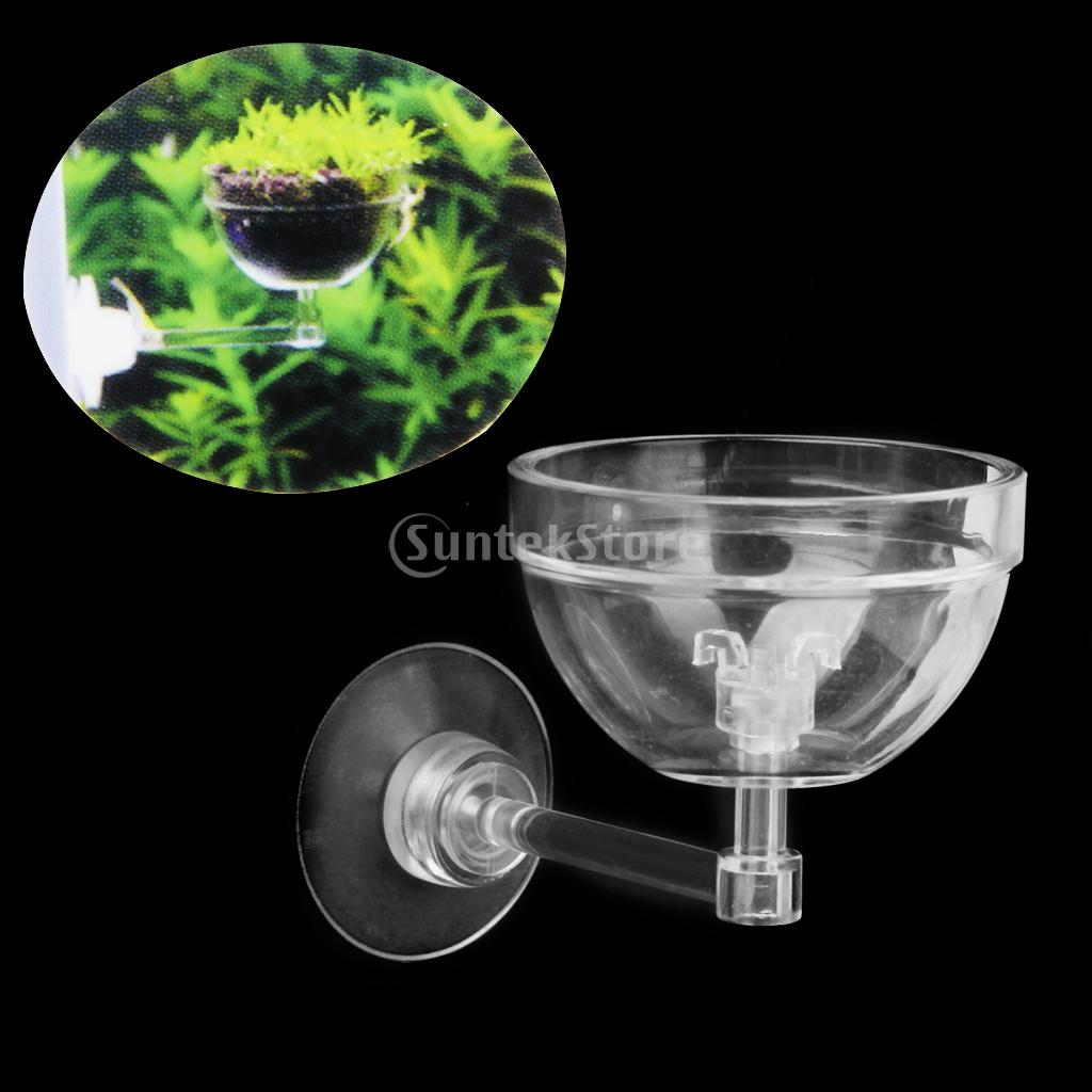 Fish tank real plants - Aliexpress Com Buy Aquatic Plant Pot Bowl Holder With Suction Cup For Aquarium Fish Tank Live Plants From Reliable Aquarium Plant Holder Suppliers On