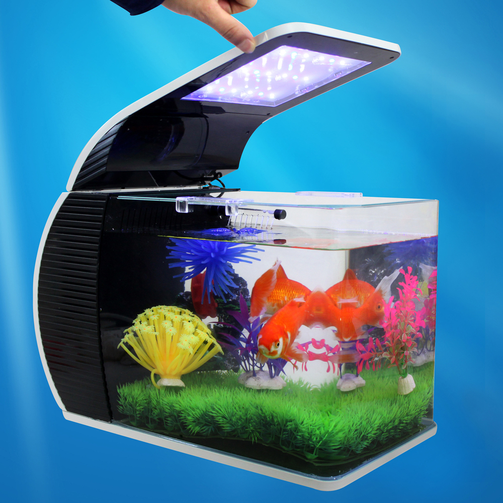 Small aquarium fish tanks - Aliexpress Com Buy Creative Mini Desktop Small Aquarium Fish Tank Birthday Small Glass Aquarium 42cm With Lighting Filter Ki 0 From Reliable Aquarium