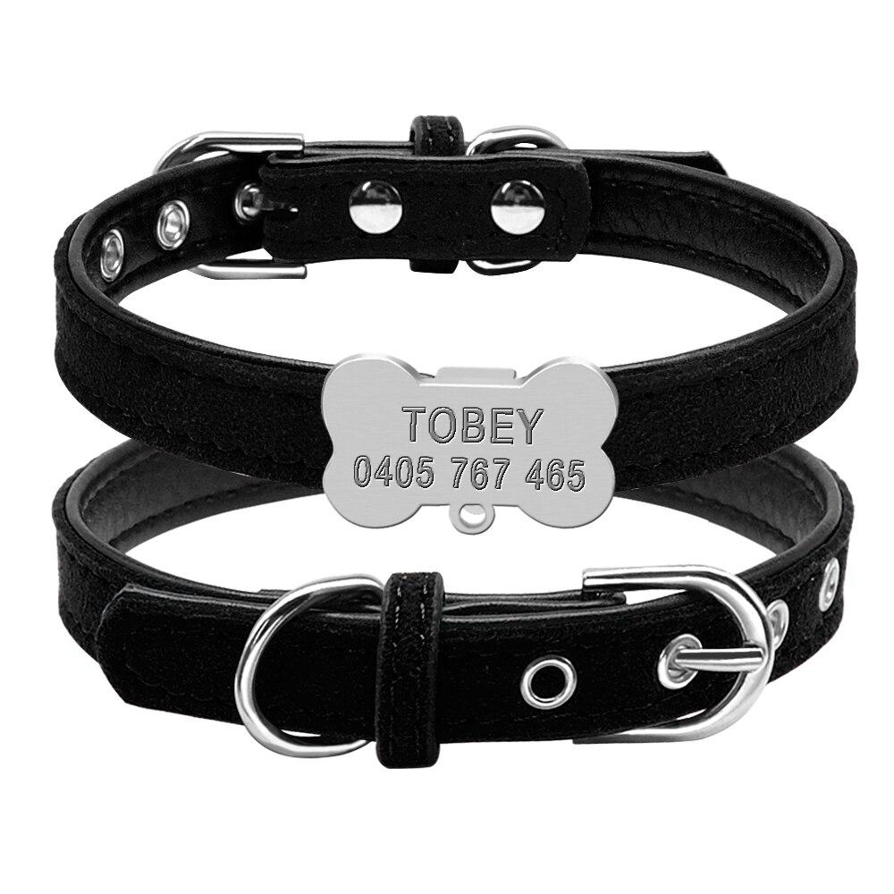 custom pet collar / custom pet tags