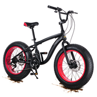 20inch mountain bike snow tires 4.0 Beach widening tires 21 speed Speed off road mountain biking Male and female students style