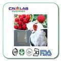 GMP fábrica de frambuesa en polvo 99% polvo de extracto de frambuesa cetona de frambuesa natural