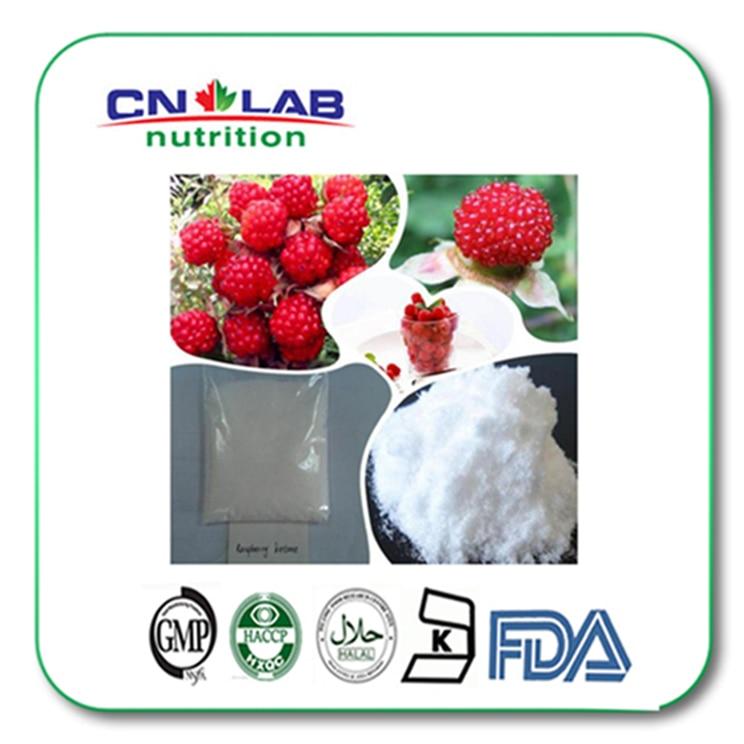 GMP factory raspberry powder 99% raspberry ketone natural raspberry extract powder