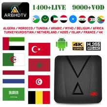 IPTV France Arabic Turkey MX10 mini 1 month IP TV French Full HD Subscription Android 4K Box Belgium Morocco