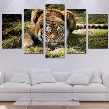 Home Decor Printed Modern Canvas Living Room Frame HD Pictures 5 Panel Jungle Tiger Grass Landscape Modular Painting Wall Poster