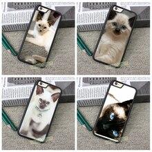 Сиамские cat мода original cell phone case for iphone 4 4S 5 5S 5C SE 6 плюс 6 s плюс 7 7 плюс # ZF74