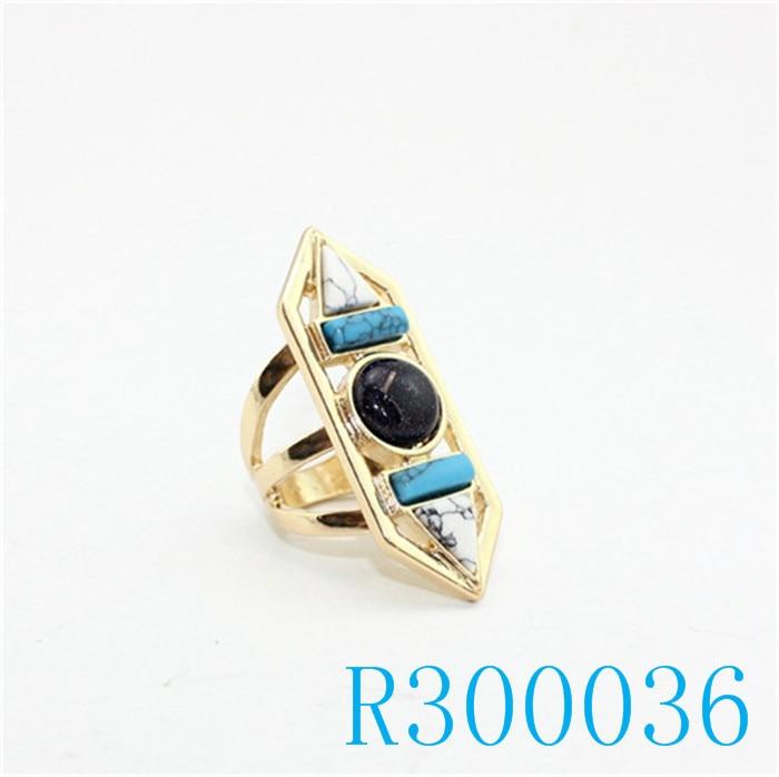 R300036