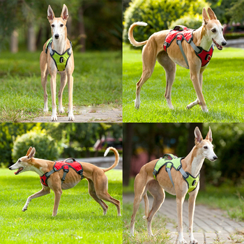 Pet Dog Harness For Big Large Dogs Vest Adjustable Strong Outdoor Reflective Harness Service Dog Supplies Accessories Products 4