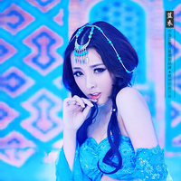 Lanyi 2014 New Sexy Aesthetic Photography Costume Exotic Women's Costume Blue Costume