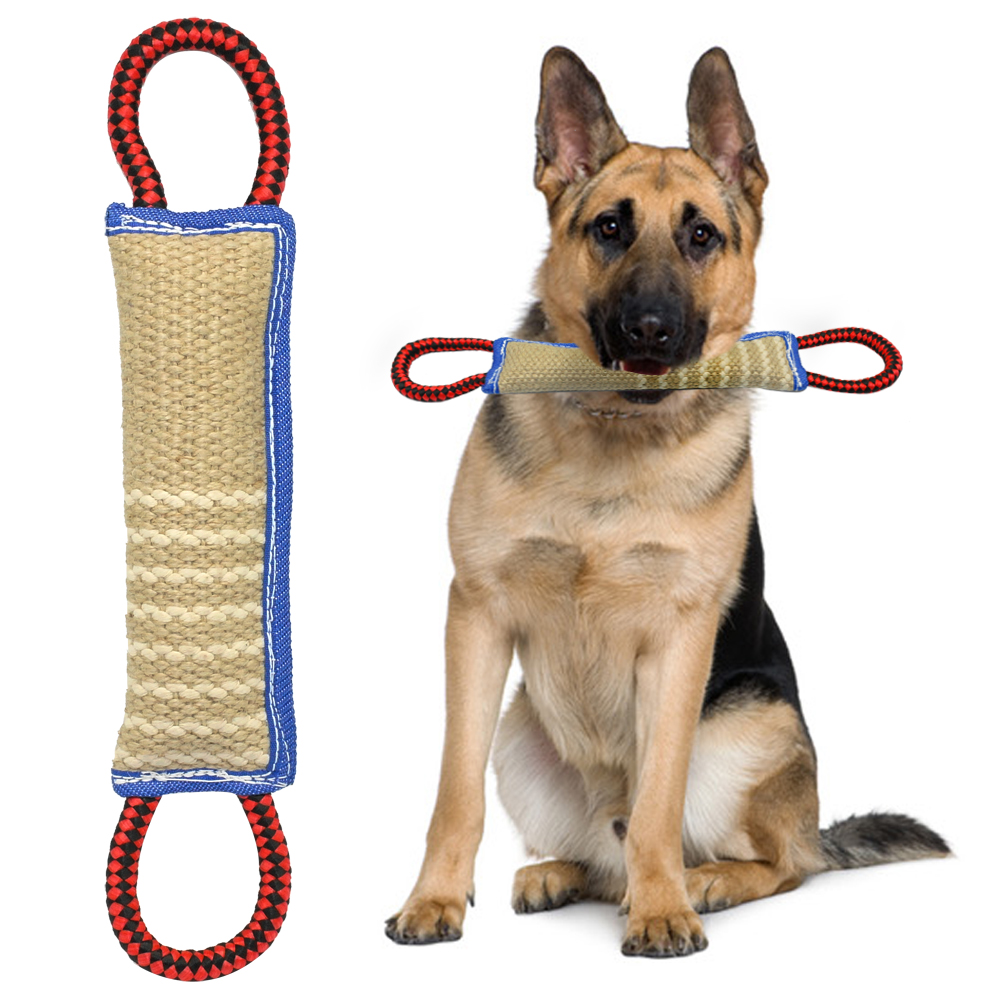 Ball On A Rope Dog Training